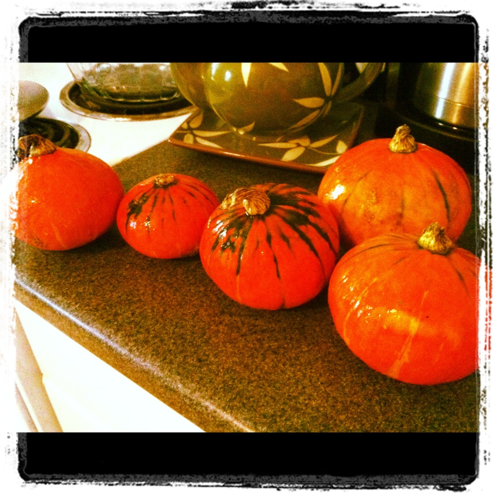 HOW-TO: Roast pumpkin & make pumpkin bread from scratch (1/6)