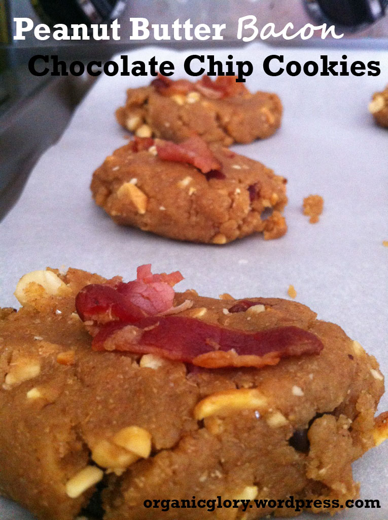 Peanut Butter Chocolate Chip Bacon Cookies | organicglory