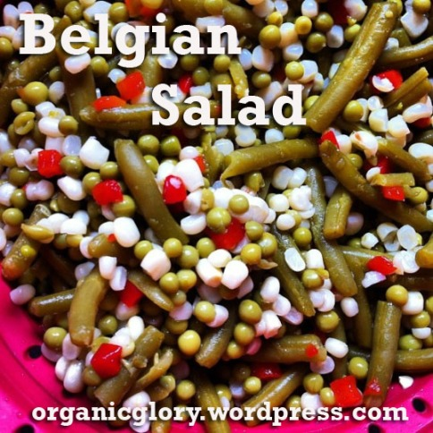 Belgian_Salad copy