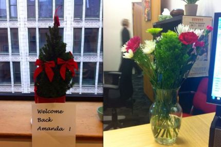 Two colleagues treated me to welcome back plants on Monday-- a Christmas tree and a bunch of blooms!