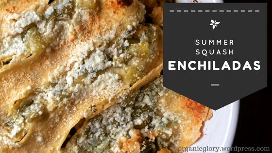 summer squash enchiladas.png